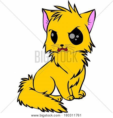 yellow cat cute with angry face and big eyes