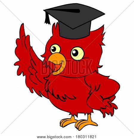talking red bird with graduation hat speaking