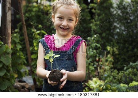 Little Girl Hand Holding Little Tree on Hands