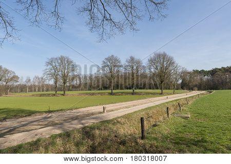 The characteristic half-open farmlands in the Achterhoek near Winterswijk in the Netherlands
