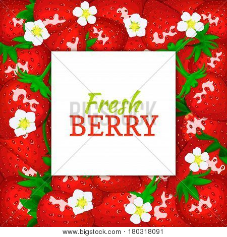 square white label on ripe strawberry background. Vector card illustration. Red berry fresh and juicy strawberry frame peeled piece of half slice for design of food packaging juice breakfast