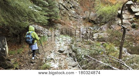 A Woman Wearing a Rain Shell Hikes Through a Lush Canyon in Early Spring
