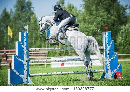 The rider on the white racehorse overcome high obstacles in the arena for show jumping on background blue sky