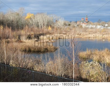 Marsh behind hurricane barrier in late autumn