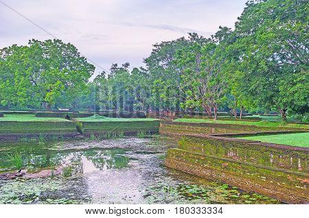 Walk In Sigiriya Garden