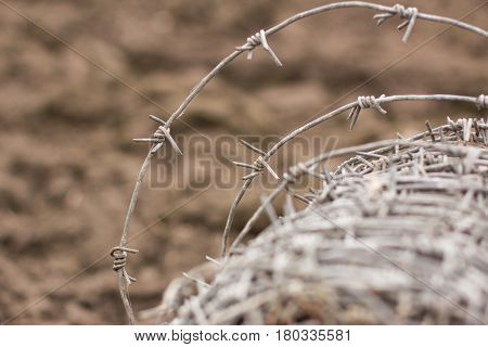 Barbed wire. Restriction of freedom or protection