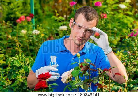 Researcher A Biologist With A Test Tube In A Greenhouse Takes A Sample
