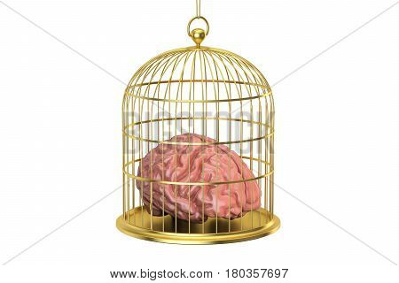 Birdcage with a brain inside 3D rendering isolated on white background