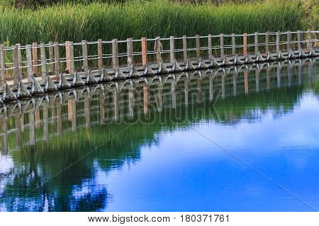 A floating boardwalk against a backdrop of cattails reflected in water on a cloudy day.