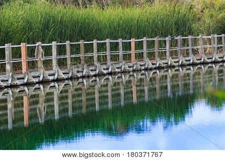 Floating boardwalk against green cattails reflected on still waters against a blue sky.