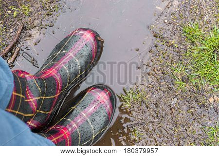 Closeup of adult rubber boots standing on mud puddle in the rain spring outdoor fun concept