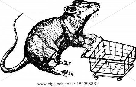 Hand drawn vector illustration or drawing of a rat with a shopping cart