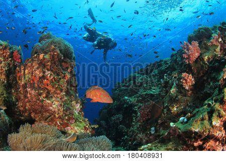 Scuba dive underwater