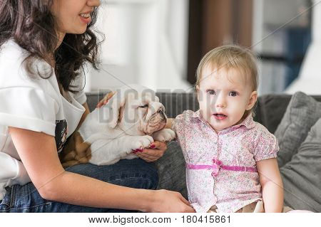 Cute girl touches puppy on the hands of her mother.