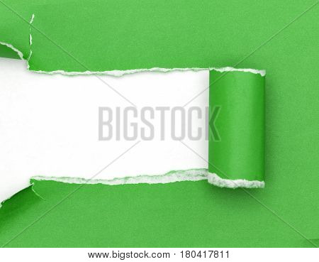 Green ripped open paper on white paper background