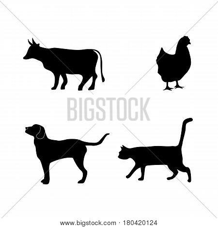 Pet dog, hen cow cat icons vector