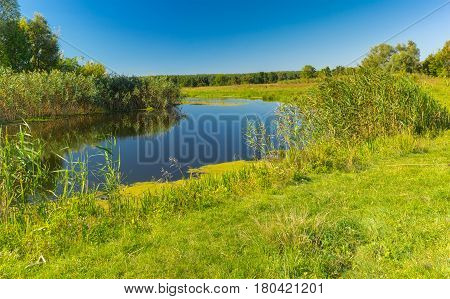 Pictorial summer landscape with small river Merla Poltavskaya oblast Ukraine