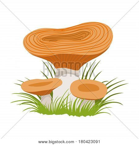 Freckle, edible forest mushrooms. Colorful cartoon illustration isolated on a white background
