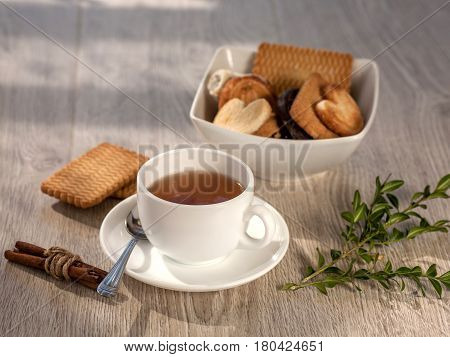 cup of tea and biscuits on a kitchen table in morning light