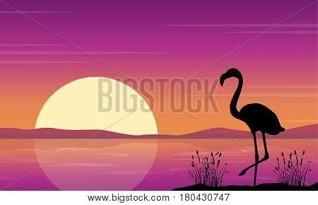 At lake scene with flamingo silhouettes vector art