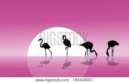 Flamingo on lake scenery silhouettes vector illustration