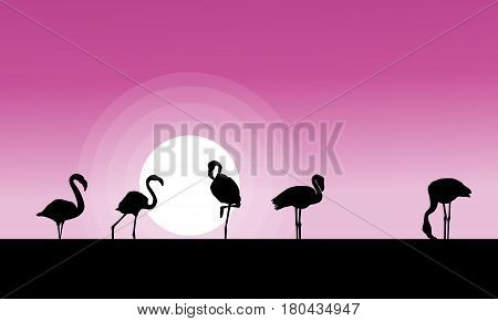 Collection stock of flamingo at sunset scene vector art