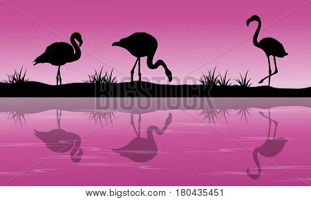 Lake scenery flamingo silhouette at sunset vector illustration