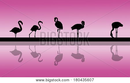 Flamingo lined at sunset scenery silhouettes vector art