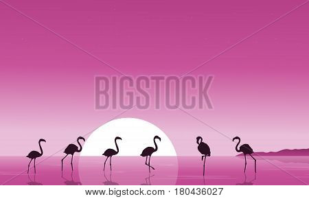 Flamingo on the lake scenery silhouettes vector illustration
