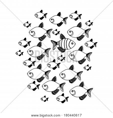 silhouette set collection fish aquatic animal with clownfish vector illustration