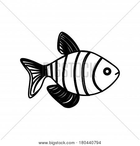 silhouette clownfish aquatic animal icon vector illustration