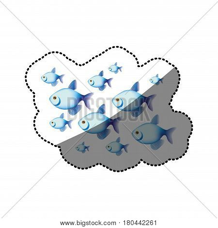 sticker colorful set collection fish aquatic animal vector illustration