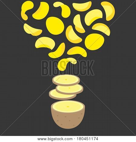 Vector half potato, potato slice and potato chips, flat design