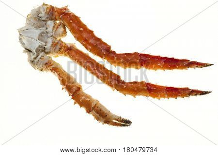 Crab legs closeup on a white background. Far East crab, a delicacy. Crab Cluster.