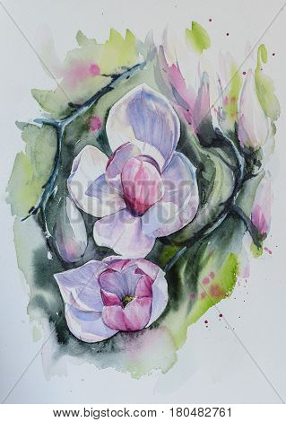 Magnolia pink flowers. Picture cretaed with watercolors.