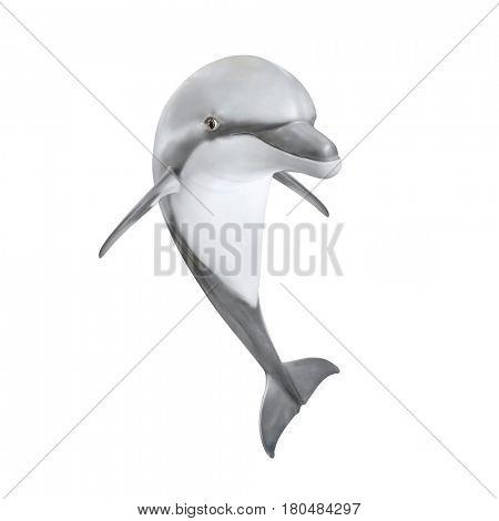 Jumping Bottlenose Dolphin. Sea life isolated on white background. Animal 3D illustration.