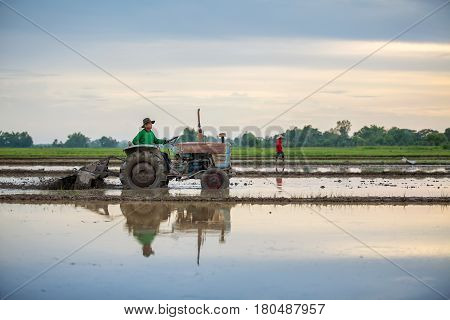 Asian farmer in tractor preparing land with seedbed cultivator sunset