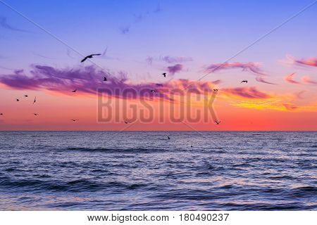 Warm summer night on sandy beach by sea. Sunset at Baltic sea in Lithuanian resort Palanga. Flock of seagulls flying over sea. Tidal waves wash the sandy beach