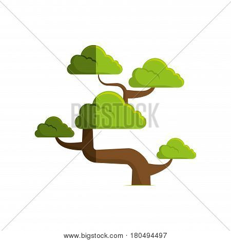 cute bonsai tree icon vector illustration design