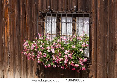 Barred window with flowers in ancient country house with rough wooden walls. Traditional wabi-sabi aesthetic worldview.