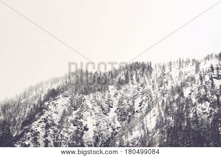 Cold bleak mountainous winter landscape with a high forested peak covered in snow under a grey sky