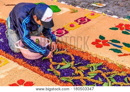 Antigua, Guatemala - March 26 2017: Local decorates Lent carpet for procession with flowers & dyed sawdust in colonial town with most famous Holy Week celebrations in Latin America.
