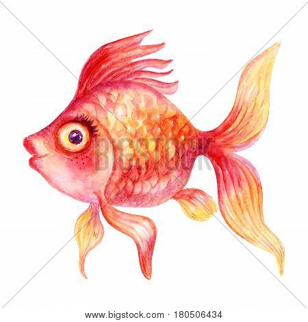 Cartoon Watercolor colorful gold fish illustrations isolated on white background. Colorful hand drawn vintage illustration. Perfect for kids cartoon magazine. Feng Shui talismans: Goldfish.