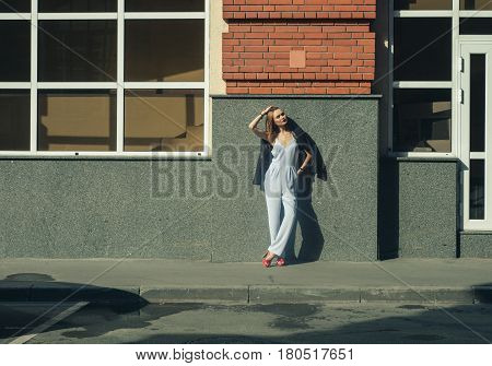 Young Stylish Business Woman On Street