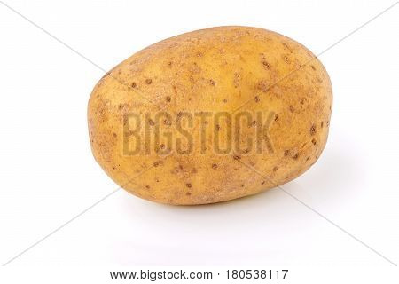 highly detailed ripe potato tuber isolated on white