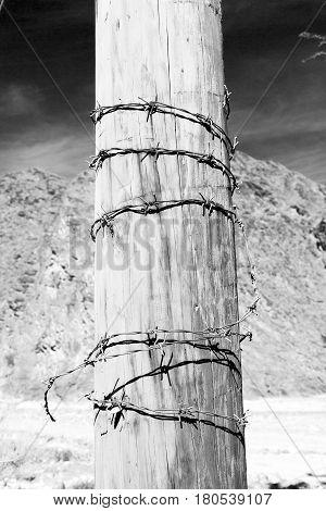 In Oman Danger In The  Background