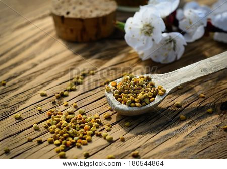 Bee pollen in a wooden spoon and flowers of spring trees. Apitherapy. Bee products