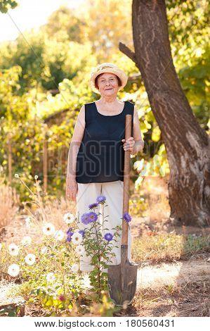 Smiling senior woman 70-75 year old holding shovel standing in garden. Summer season. 80s.