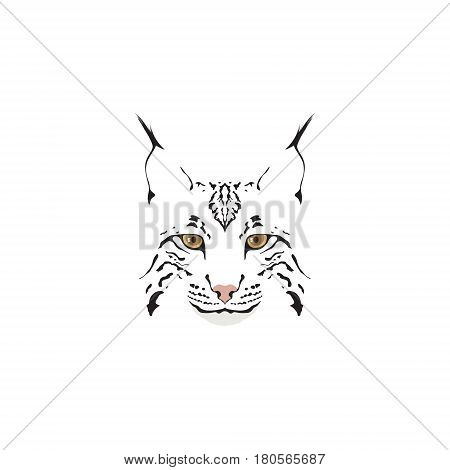 Lynx logotype. Head of lynx isolated vector illustration.