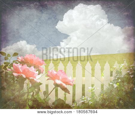 Pink roses and ivy on white picket fence in front of a green grassy hill and blue sky cloudscape background. Vintage paper textured digital photo manipulation image.